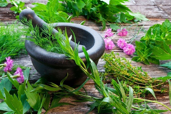Ayurveda and sex power In Medical Astrology