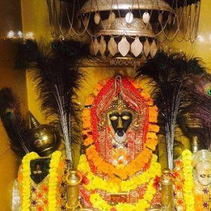 Baglamukhi or Pitambara Yagya