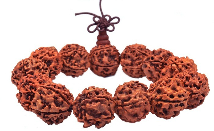 Healing the Planet with Rudraksha