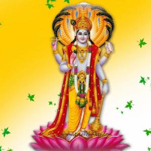 Maha Vishnu Yagya