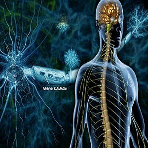 Multiple Sclerosis Treatment In Medical Astrology