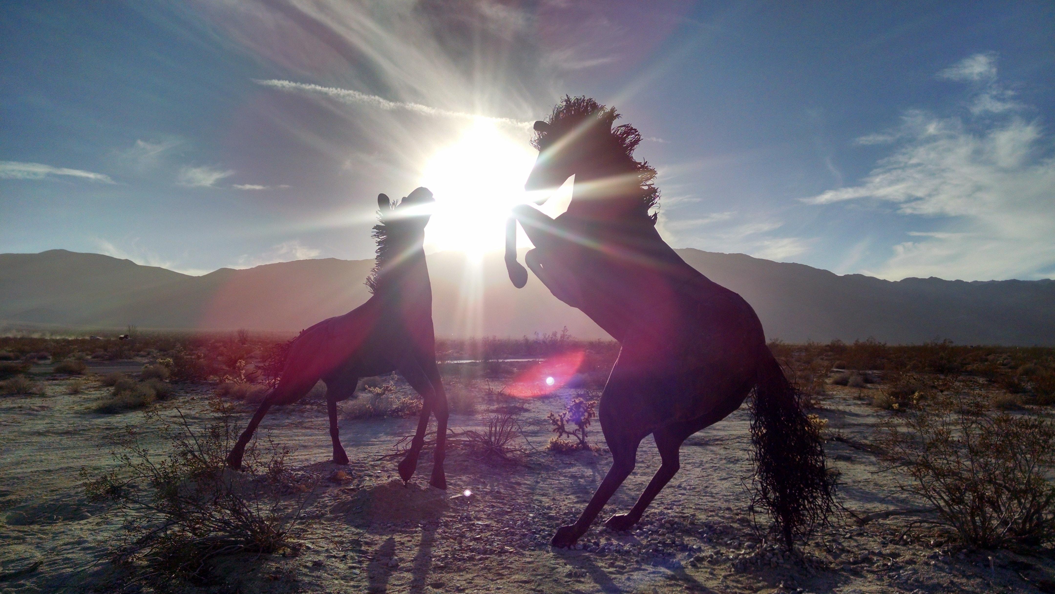 Ashwini Star and Its Mythology