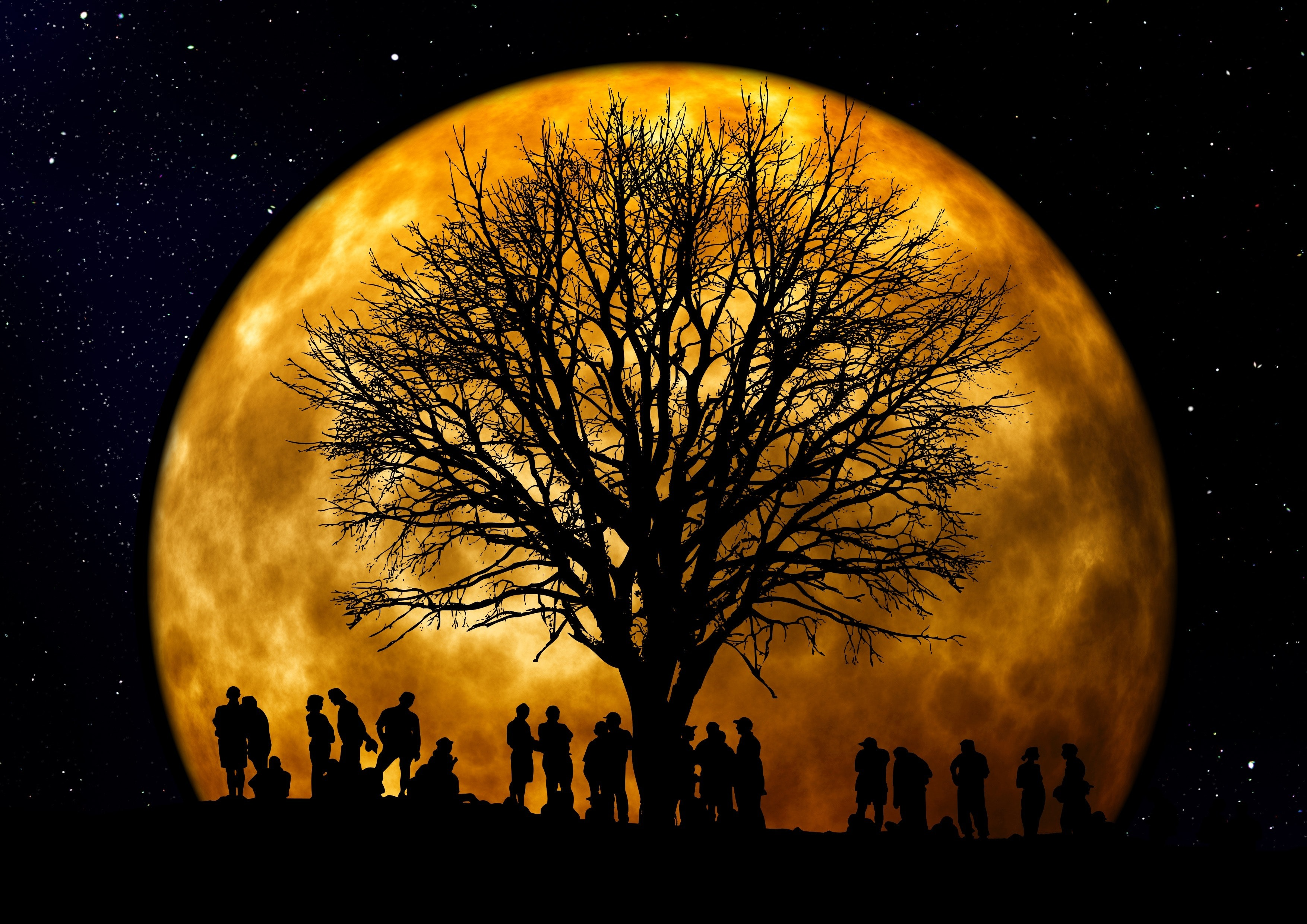 10 Ways To Dignify Your Moon