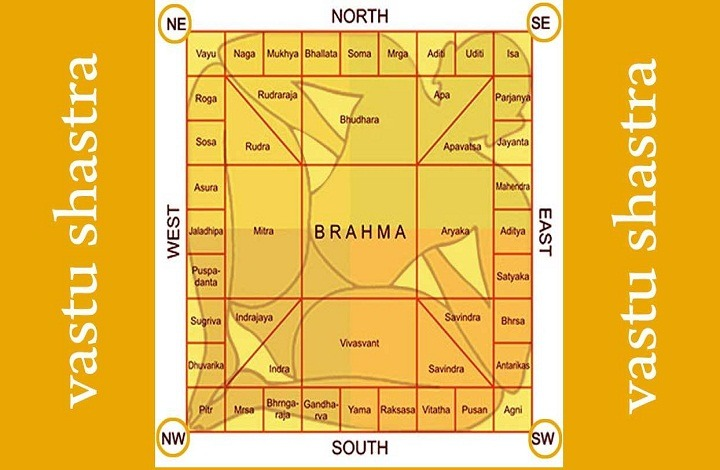 Vastu Plants for Money