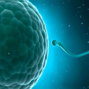 azoospermia-treatment-in-medical-astrology