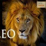 Money Astrology Report For Leo