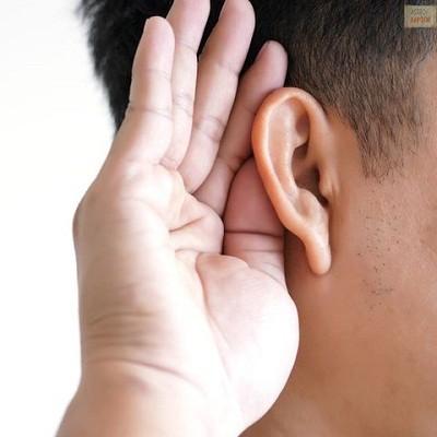 Ayurvedic Treatment of Hearing Loss